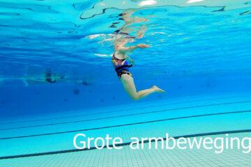 Train je schouders en bovenrug met het zeepaard in het zwembad - Aquarunning